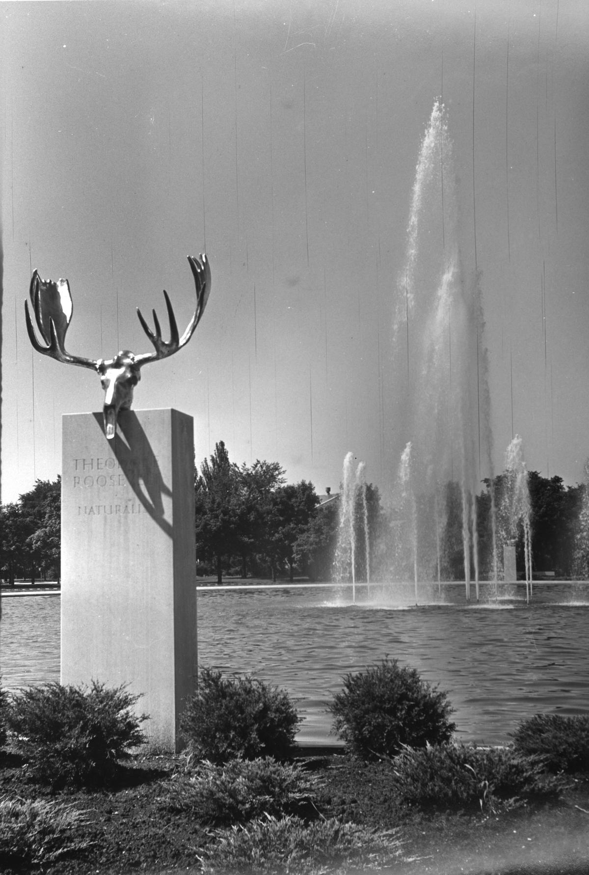 View of the Theodore Roosevelt Memorial Fountain and bronze moose sculpture mounted on a concrete plinth, Brookfield Zoo Chicago Zoological Society