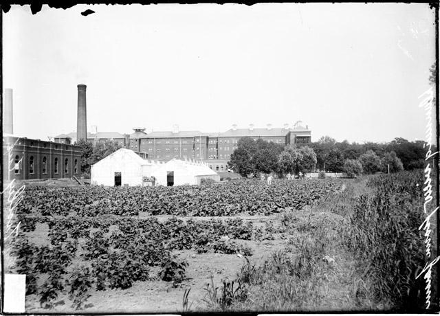 [Chicago State Hospital buildings as seen from across the farm at Dunning]