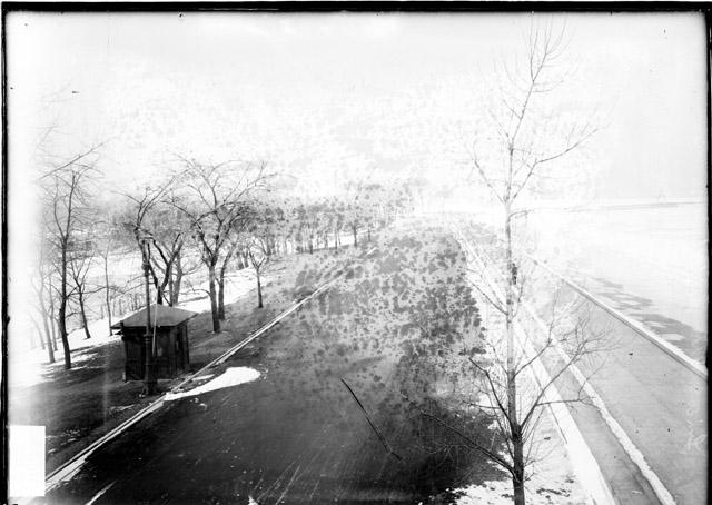 [Shoreline, Lake Shore Drive and the lagoon in Lincoln Park viewed from the High Bridge]