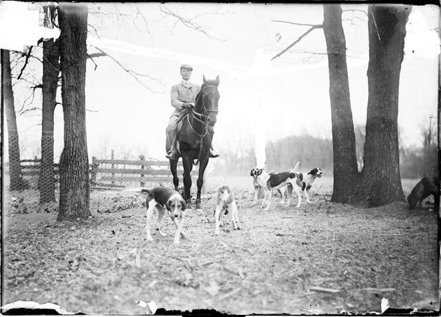 [Fox hunting, Midlothian Country Club, hunter on horseback and dogs standing on a path]