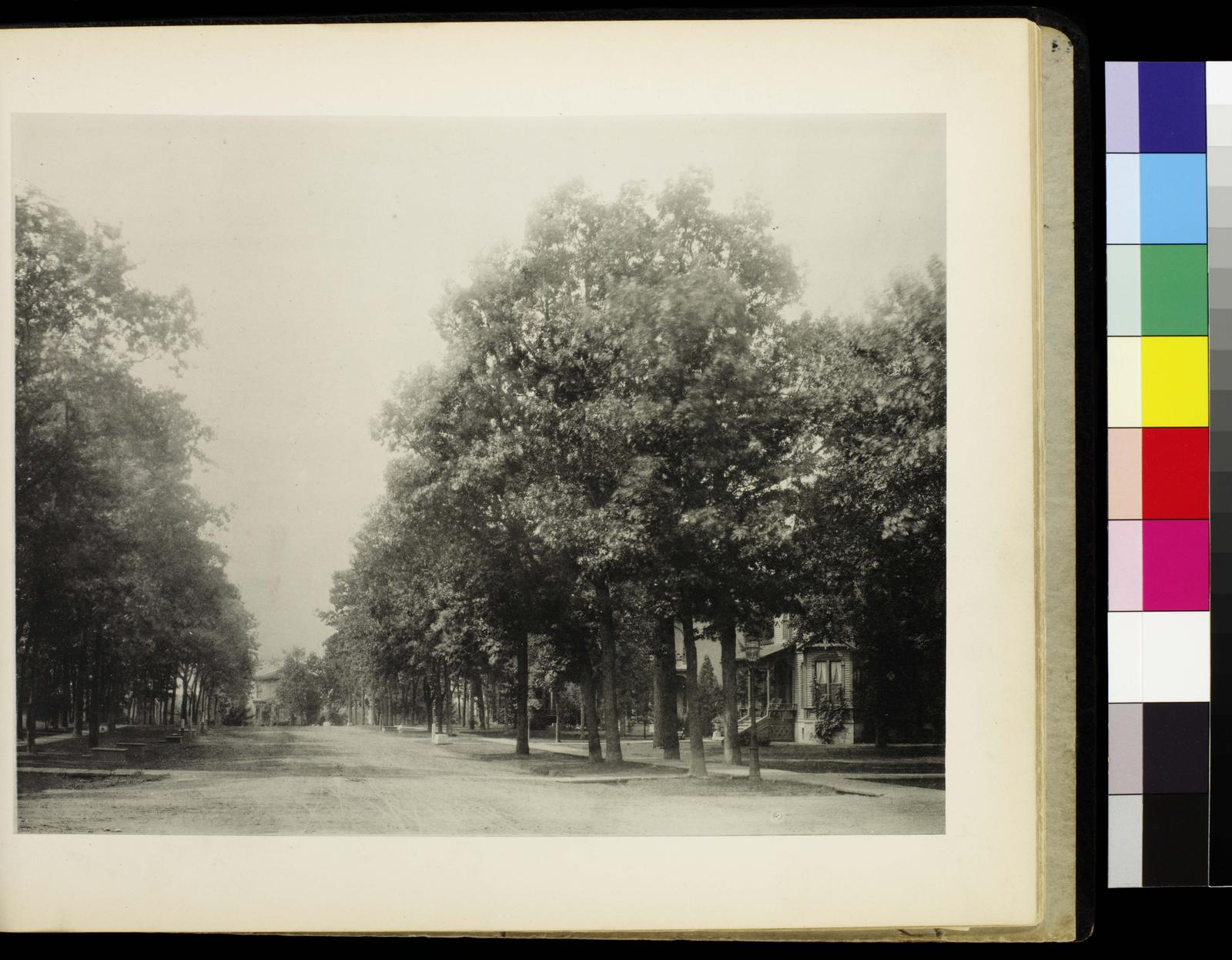 Photographic views of picturesque Evanston, state of Illinois. Davis Street, west from Ridge Avenue. Versos