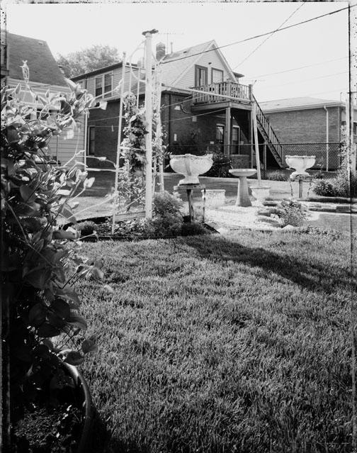 Back Yard, image 11