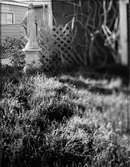 Back Yard, image 05