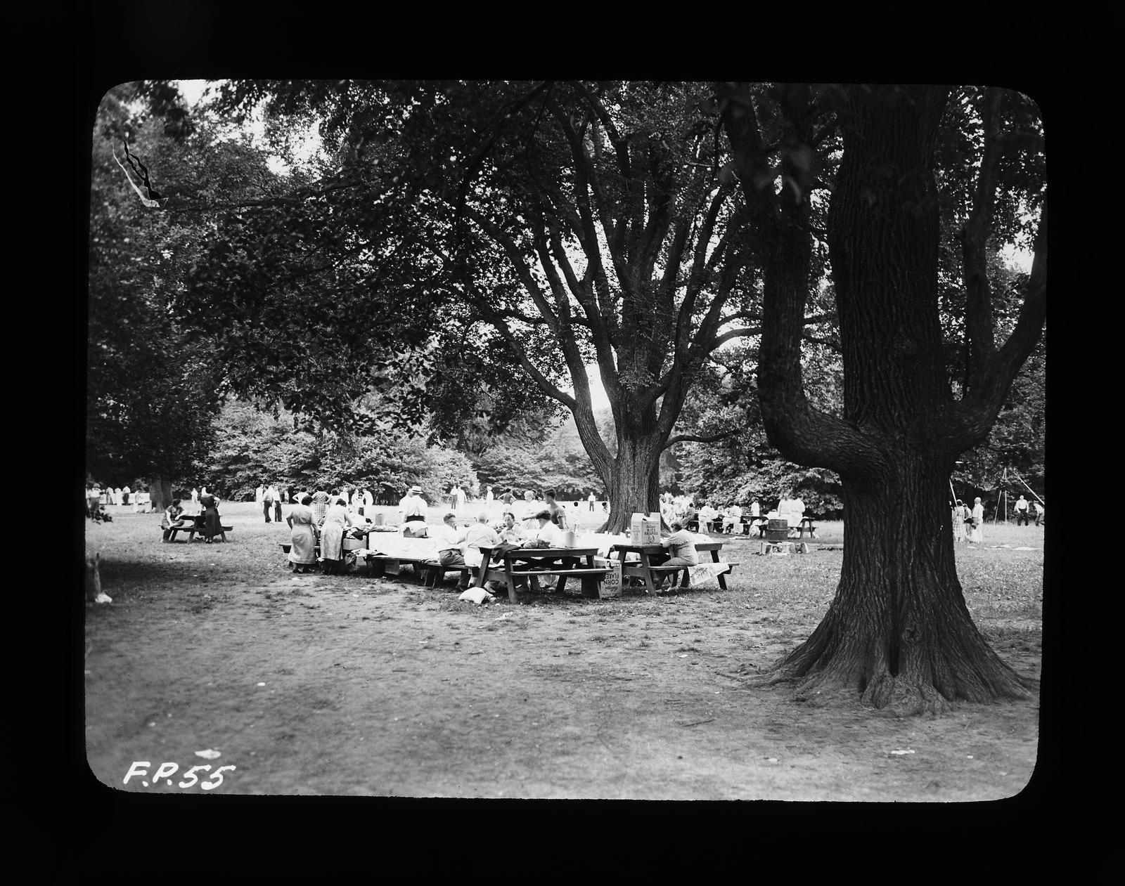Activities: Picnic and Recreation, [Large Picnic]